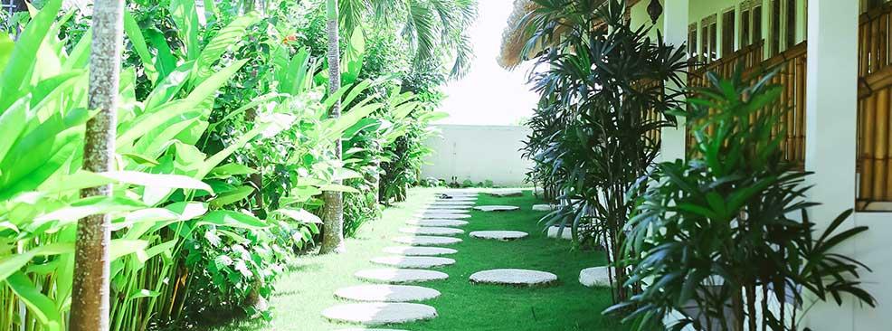 Sun House Garden